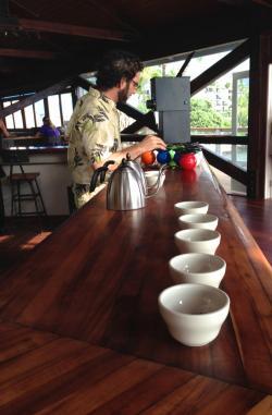 Day Light Mind Coffee Company